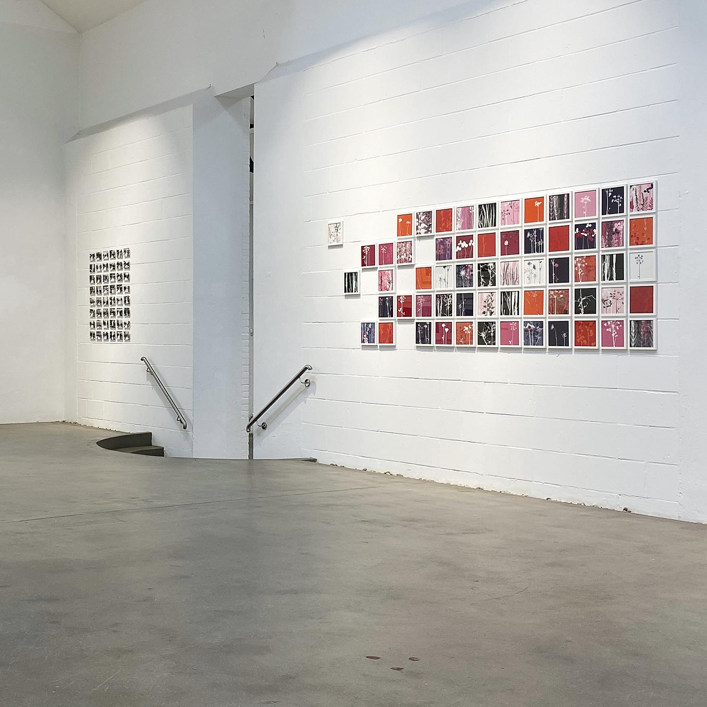 Blick in die Ausstellung   'Vielfalt am Wegesrand' [60-teiliges Werk] 2020   Galerie Münsterland   Emsdetten