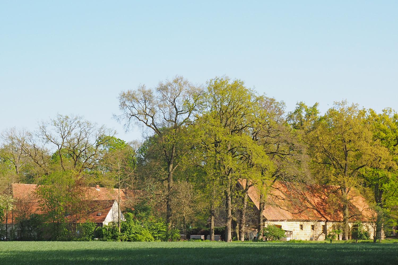 Kloster Bentlage | Außengelände