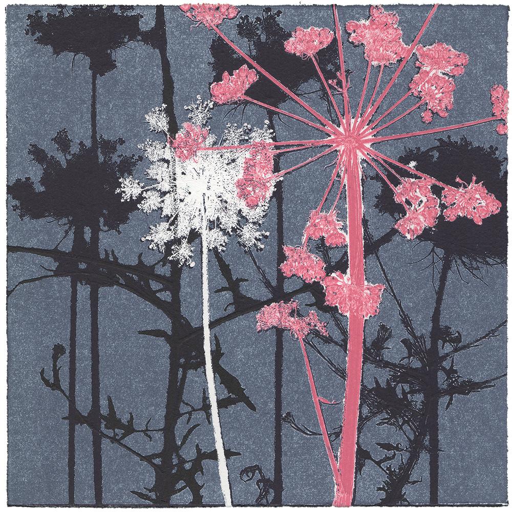 29/60 VIELFALT AM WEGESRAND | Einzelgrafik einer 60-teiligen Arbeit | Unikat | Monoprint von Wildblumen | 20 x 20 cm | 2020
